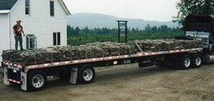 In one summer Billy and Jay hand palletized 300 tons of stone and began shipping them wholesale.